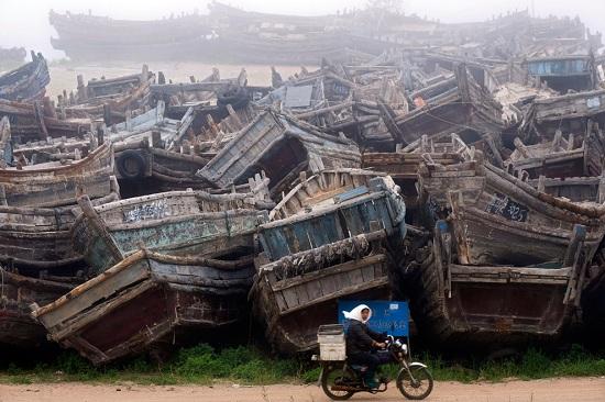 Qingdao-bp27
