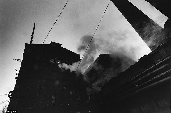 Lynch-factories-1