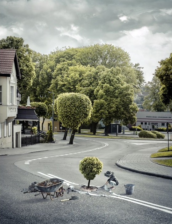 Tree-planter-poland