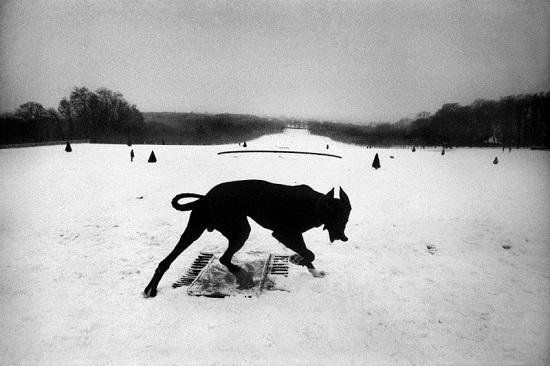 Koudelka-hauts-de-seine,parc-de-seeeaux,1987
