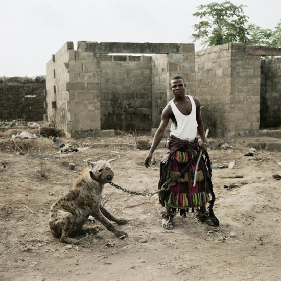 Pieter-hugo-hyenas14