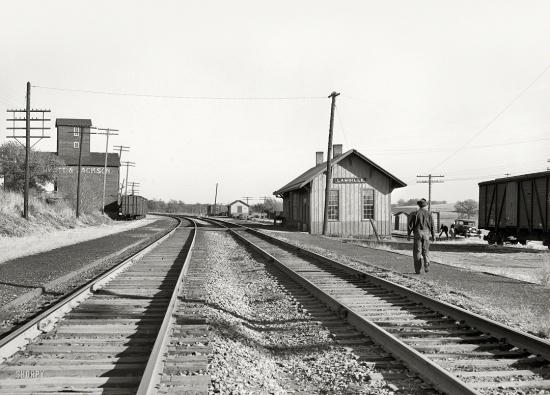 Rothstein-SHORPY-8b19105a