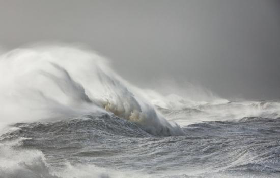 Sirens-thetis