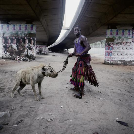 Pieter-hugo-hyenas2