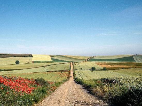 Camino-pilgrimage