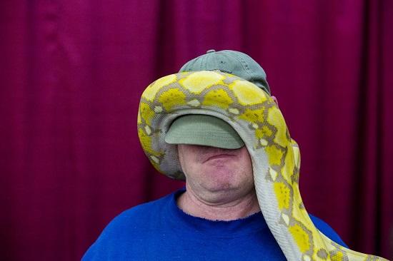 Python-mich