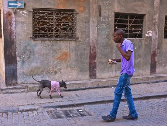 Havana57