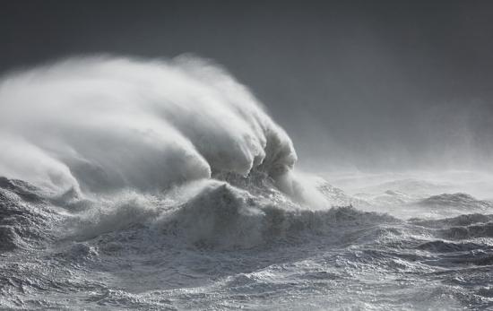 Sirens-leviathan