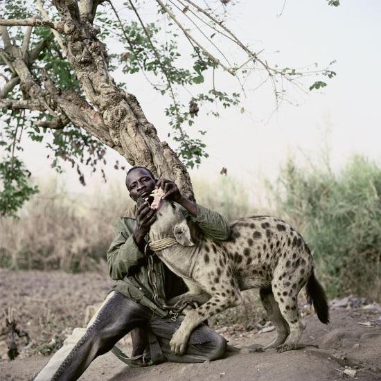 Pieter-hugo-hyenas11