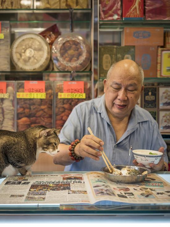 HK-shop-cats9