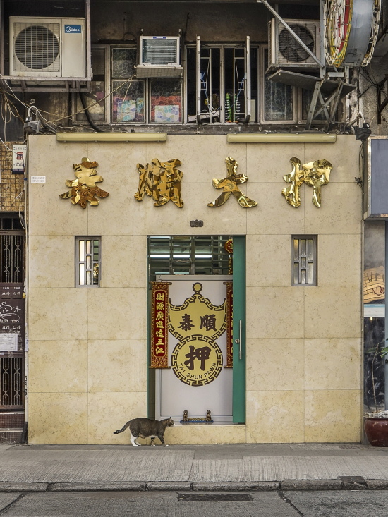 HK-shop-cats23