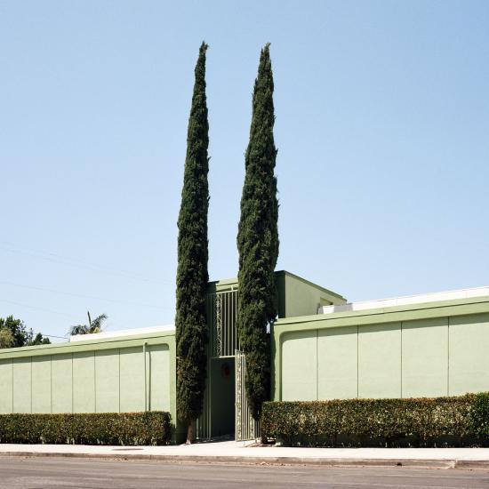 LA-trees1