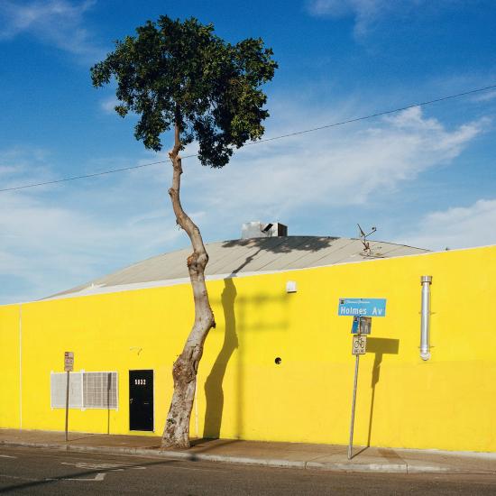 LA-trees5
