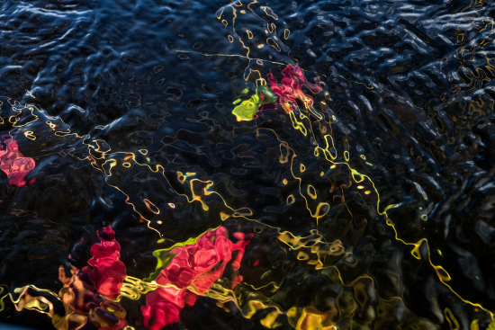 Sage_sohier_waterscapes_16