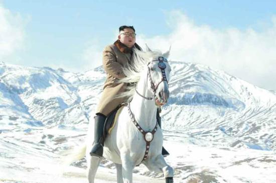 Kim-horse3