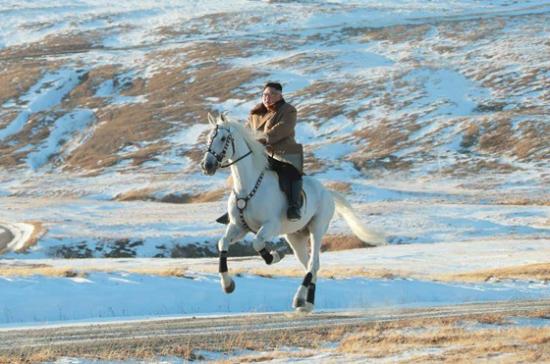 Kim-horse8