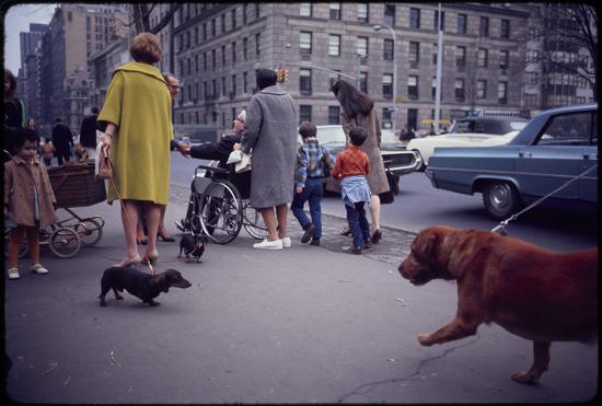 Winogrand-Untitled-New-York-1967-954x643