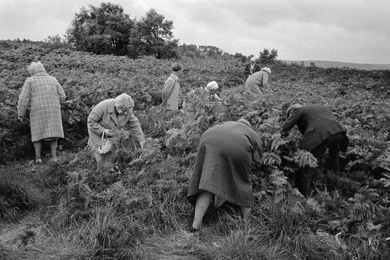 Parr-Brimham-Rocks-North-Yorkshire-England-1974-by-Martin-Parr-954x636