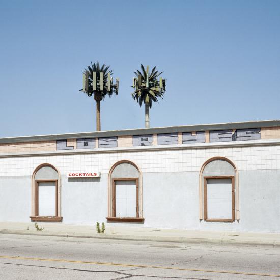 LA-trees9
