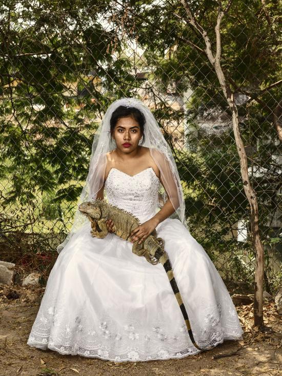 The wedding gift  Juchitán de Zaragoza  2018